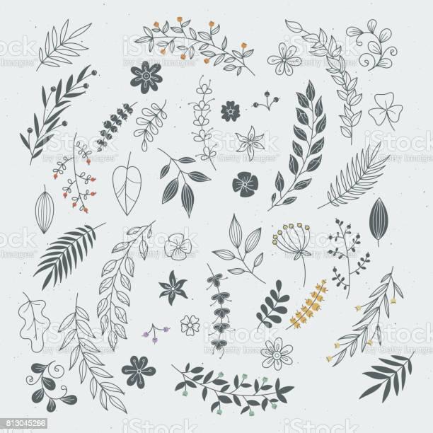 Ornamenti Rustici Disegnati A Mano Con Rami E Foglie Cornici E Bordi Floreali Vettoriali - Immagini vettoriali stock e altre immagini di Ambiente