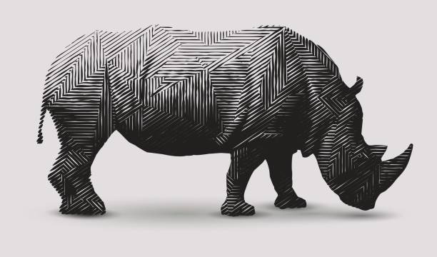 Ryno Illustration Vector rhinoceros illustration. Polygon shaped line- art. rhinoceros stock illustrations
