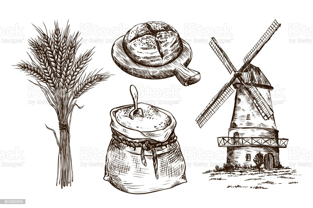 Sack Of Flour Windmill And Fresh Bakery Products Homemade Baking Bakery  Products Vector Sketches On White Stock Illustration - Download Image Now
