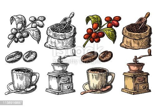 Sack with coffee beans with wooden scoop and beans, cup, branch with leaf and berry. Hand drawn sketch style. Vintage vector color engraving illustration for label, web. Isolated on white background.
