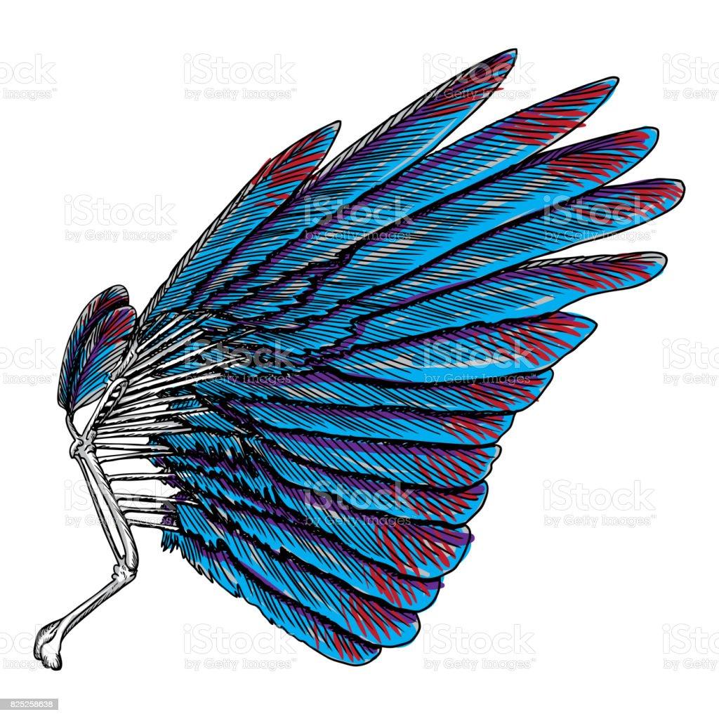 Sacred angel or bird wing symbolism of lightness spirituality sacred angel or bird wing symbolism of lightness spirituality heaven and imagination biocorpaavc