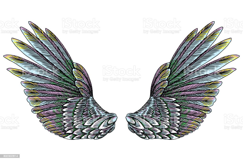Sacred Angel Or Bird Wings Symbolism Of Lightness Spirituality