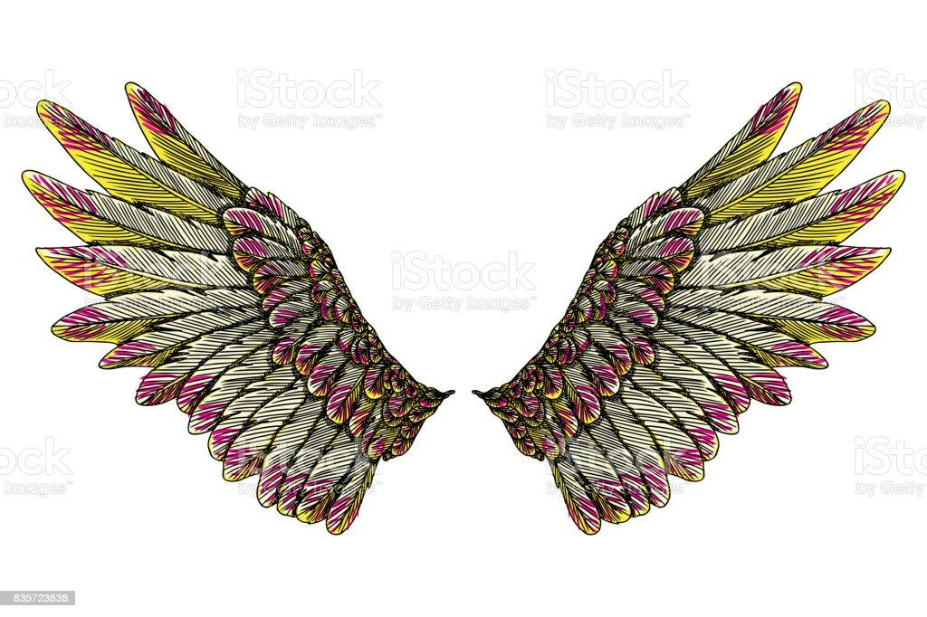神聖な天使や鳥の羽。軽さ、霊性、天と想像力の象徴。自由と勝利。木版画ヴィンテージスタイル翼、流行に敏感なタトゥーやビンテージの身体芸術概念。 ベクターアートイラスト