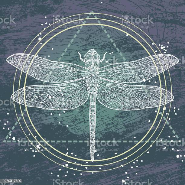 Sacred geometry dragonfly vector id1070317520?b=1&k=6&m=1070317520&s=612x612&h=cu0l2vm5e8avzhbtpucghvm ueiykv4krhesulmcbxe=