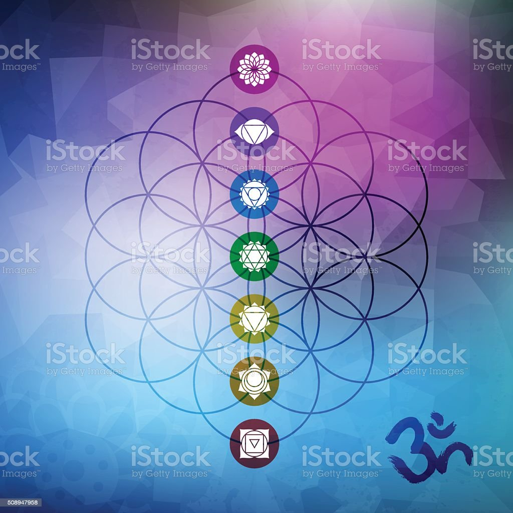 Sacred geometry flower of life with chakra icons vector art illustration