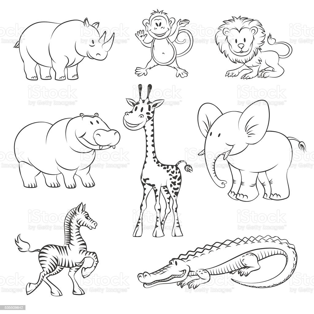 Safari and jungle vector animals vector art illustration