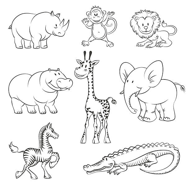 Best Black And White Animals Illustrations, Royalty-Free
