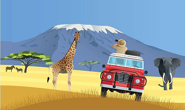safari-truck in der afrikanischen savanne - afrikanische steppe dürre stock-grafiken, -clipart, -cartoons und -symbole