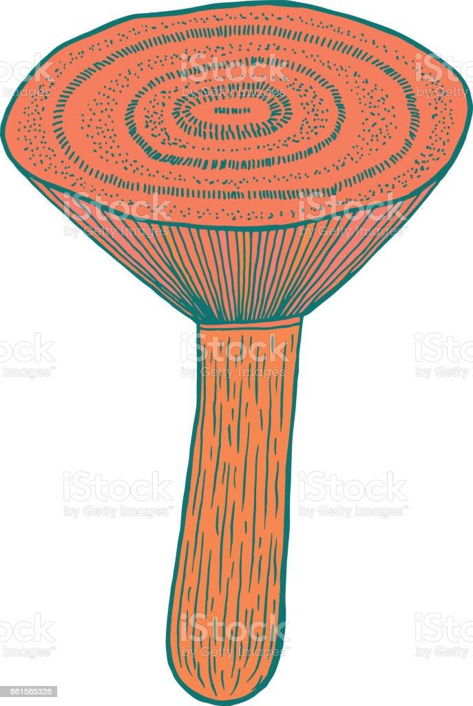 Safran Süt Kap Yenilebilir Mantar çizgi Film Sayfa Boyama Doodle