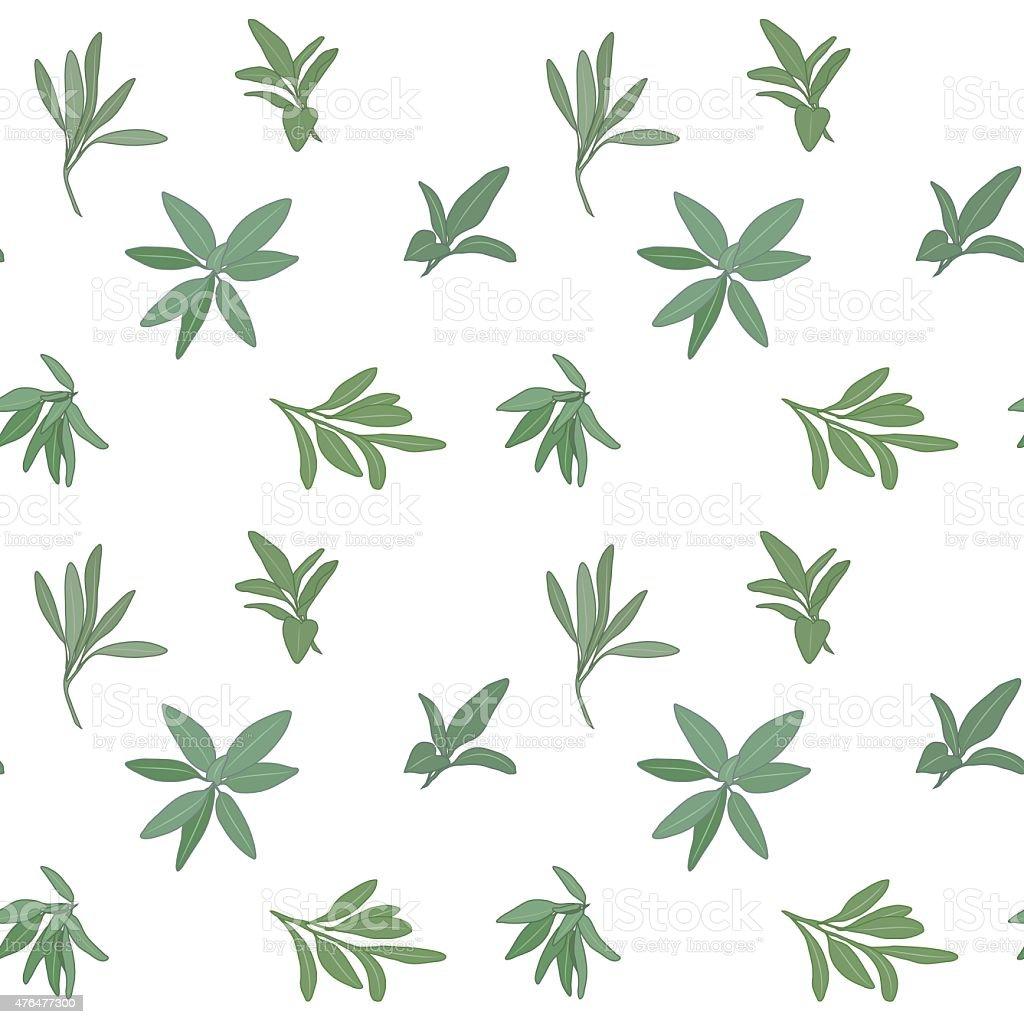 Sage seamless pattern vector art illustration