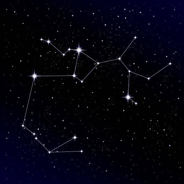 ilustrações de stock, clip art, desenhos animados e ícones de constelação de sagitário - mapa das estrelas