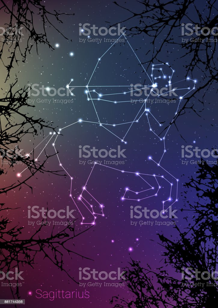 Sagittarius Zodiac Constellations Sign With Forest Landscape