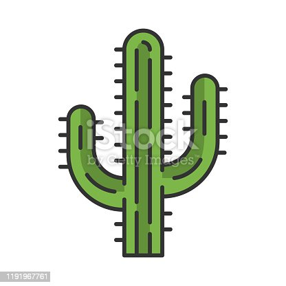 Saguaro cactus color icon. Arizona state wildflower. Mexican tequila cactus. American tropical plant. Isolated vector illustration
