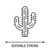 Saguaro cactus linear icon. Arizona state wildflower. Mexican tequila cactus. American tropical plant. Thin line illustration. Contour symbol. Vector isolated outline drawing. Editable stroke