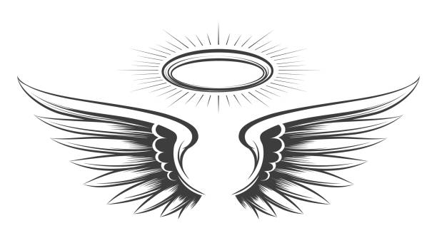 illustrazioni stock, clip art, cartoni animati e icone di tendenza di schizzo delle ali di san - aureola