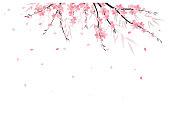 Vector illustration Sakura branch decoration. Floral background. Pink flowers