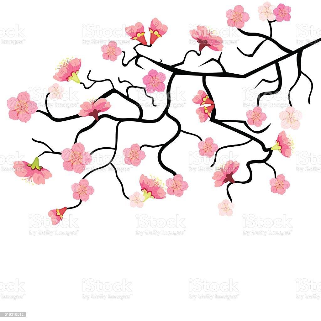 Sakura branch with cherry blossom. vector illustration vector art illustration