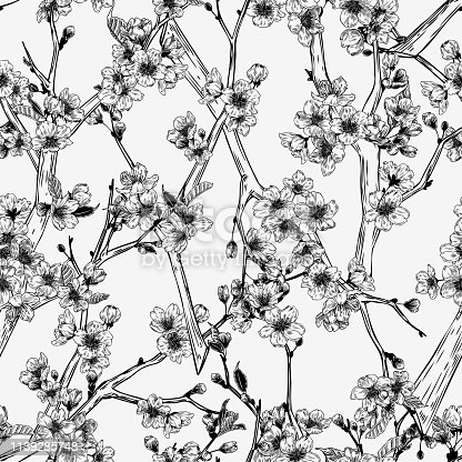 Sakura branches hand drawn seamless pattern in vintage style Black and White botanical graphic for paper, textile, wrapping decoration, scrap-booking, t-shirt, cards.