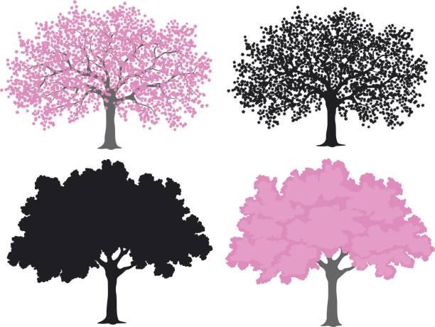 さくら、桜の色とシルエットで - 桜点のイラスト素材/クリップアート素材/マンガ素材/アイコン素材