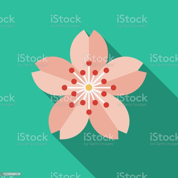 Sakura flat design japan icon vector id1026396528?b=1&k=6&m=1026396528&s=612x612&h=30aco3x7ikyjqdjys92mry9jgd7frof9jactotyp yy=