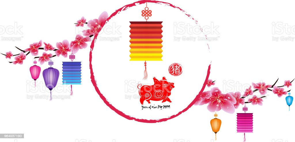 Sakura flowers background. Cherry blossom and lantern isolated white background. Chinese new year (hieroglyph Pig) - Royalty-free 2019 stock vector