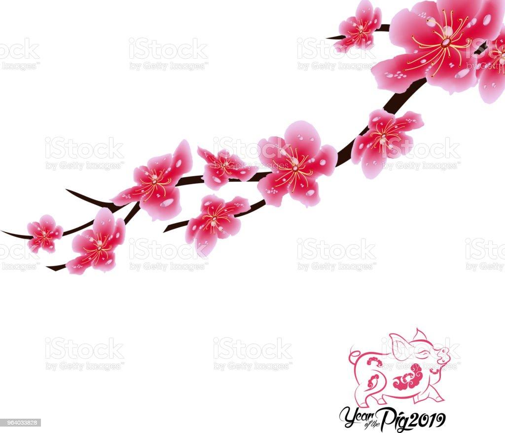 Sakura flowers background. Cherry blossom isolated white background. Chinese new year - Royalty-free 2019 stock vector