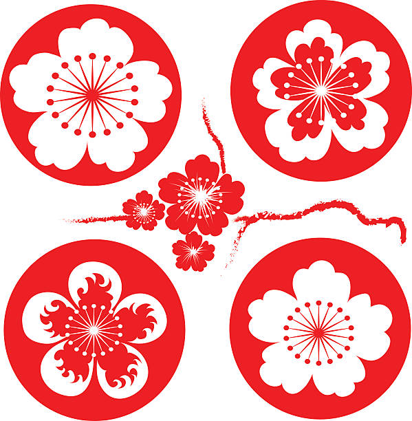 sakura flowers vector art illustration