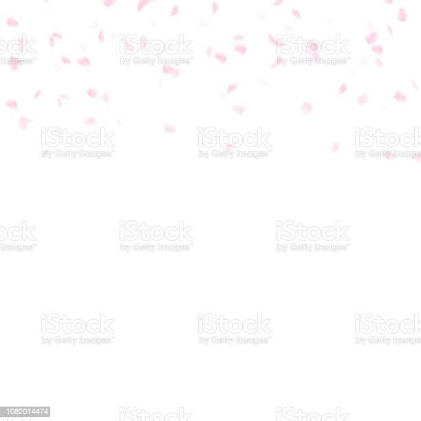 Sakura petals scatter falling watercolor ink artistic texture vector id1082014474?b=1&k=6&m=1082014474&s=612x612&h=yd2wu8h5orx3n4ysietzsyoofoipm fix5mzw pquk0=