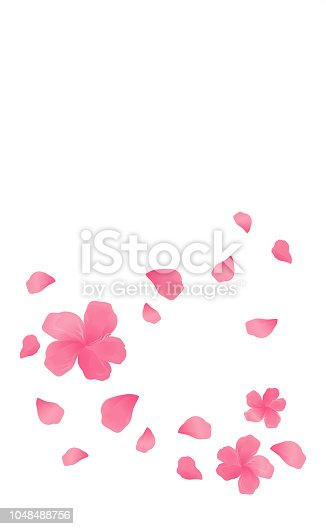 Sakura Pink flowers and flying petals isolated on White vertical background. Apple-tree flowers. Cherry blossom. Vector EPS 10 cmyk