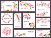 Sakura vector blossom cherry greeting cards with spring pink blooming flowers illustration japanese set of wedding invitation flowering template decoration isolated on white background.