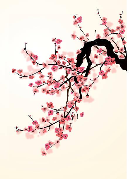 sakura - chinese new year stock illustrations