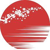 Sakura.