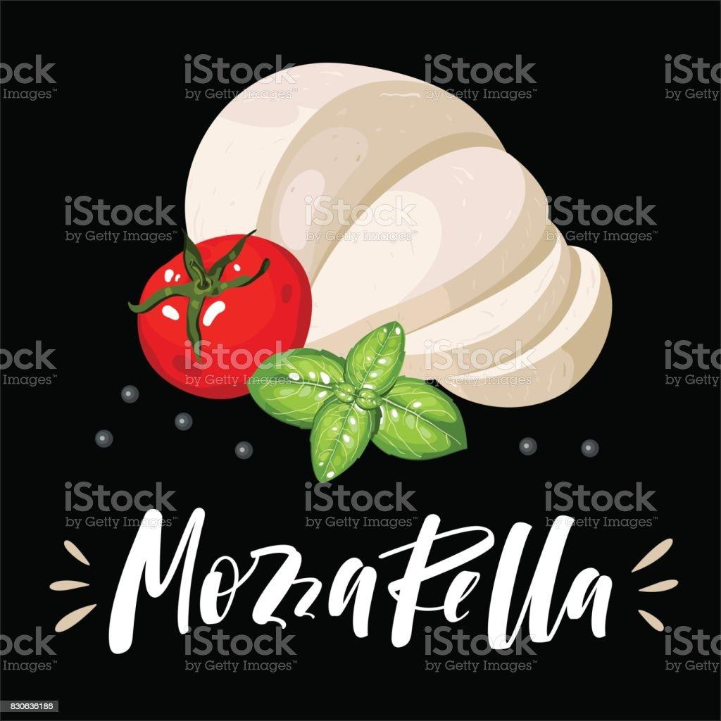 Salad and pizza ingredients - sliced mozzarella, tomato, basil vector art illustration