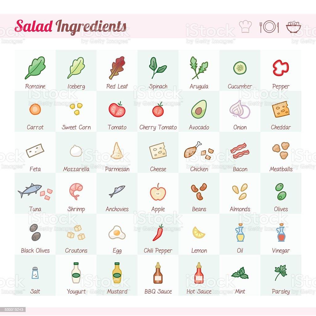 Salad ingredients vector art illustration