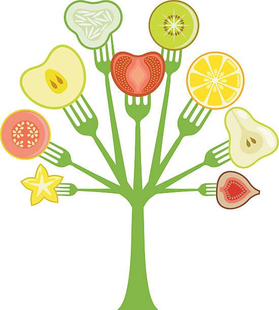 salat - feigensalat stock-grafiken, -clipart, -cartoons und -symbole