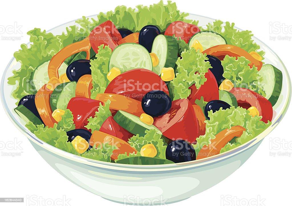 Salad royalty-free stock vector art