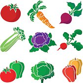 A vector illustration of vegetables that might be used in a salad: tomato, carrot, beet, celery, purple cabbage, radish, green bell pepper, lettuce, red and yellow bell pepper.