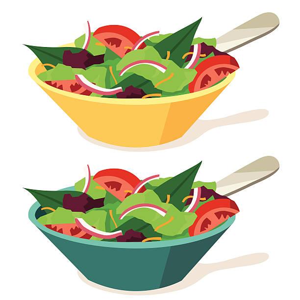 Salads Crisp fresh green salad in 2 different color bowls. salad bowl stock illustrations