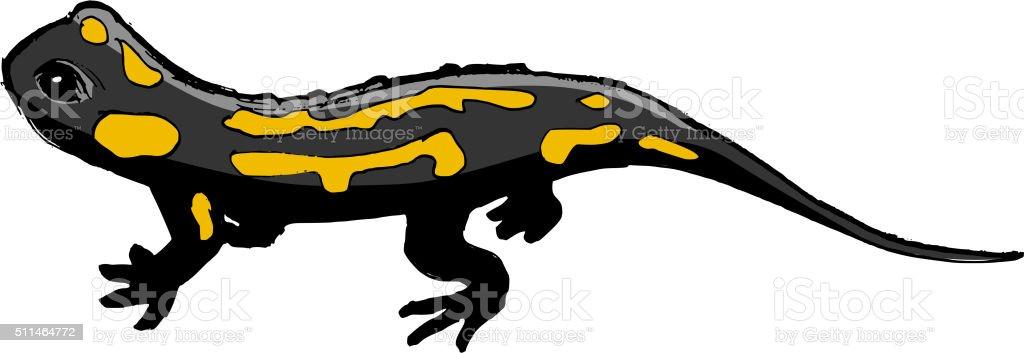 サンショウウオイラストの野生動物動物園野生生物爬虫類