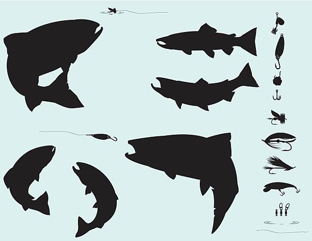 illustrazioni stock, clip art, cartoni animati e icone di tendenza di pesca del salmone e della trota silhouette set - trout