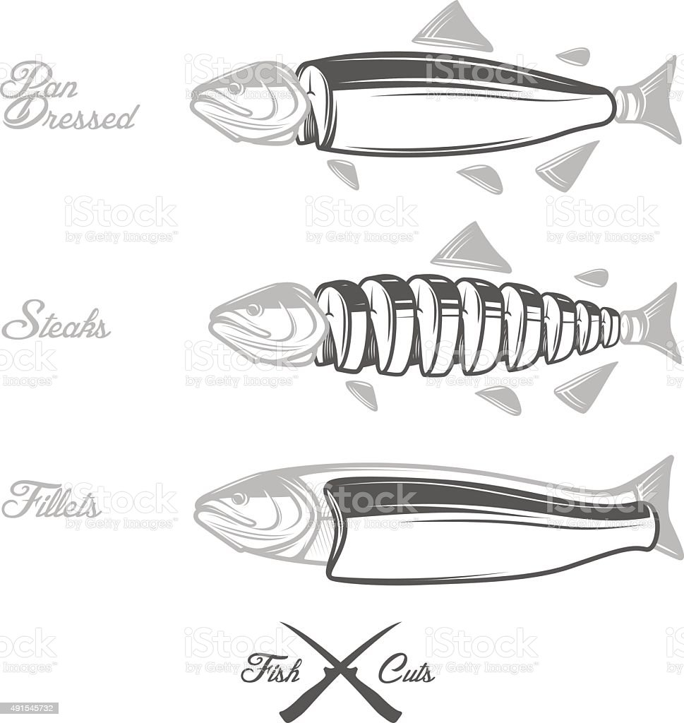 Salmon cuts diagram - pan dressed, fillets and steaks vector art illustration