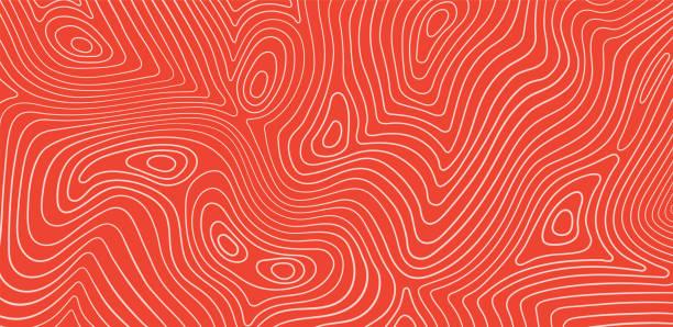 lachs filet textur, fisch-muster. vektorhintergrund mit streifen lachs - lachs meeresfrüchte stock-grafiken, -clipart, -cartoons und -symbole