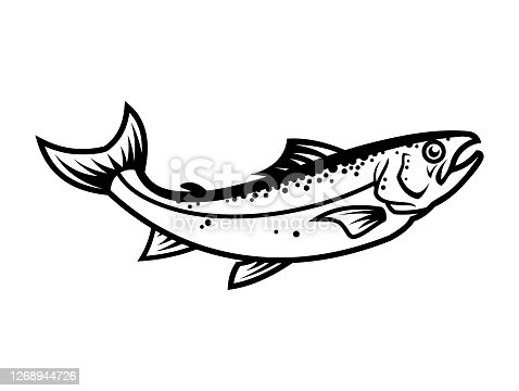 Salmon fish silhouette. Cartoon salmon character mascot - outline cut out vector icon