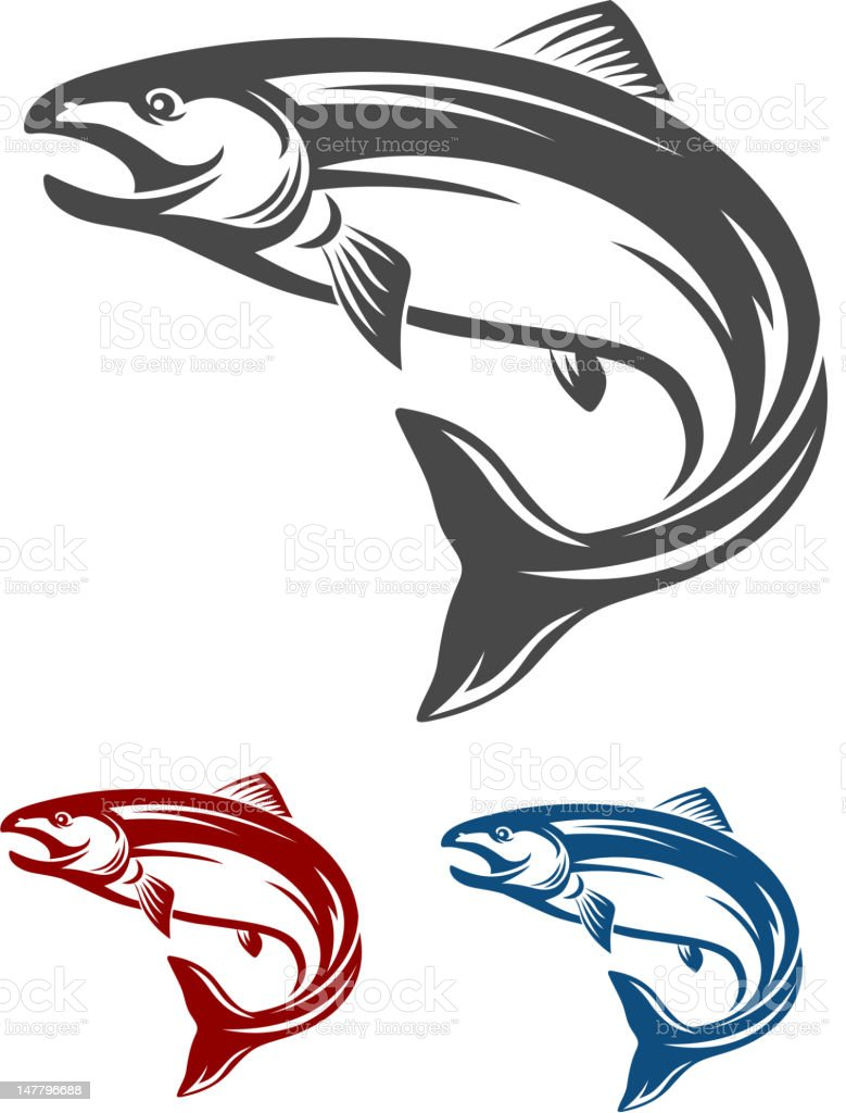 Salmon fish vector art illustration