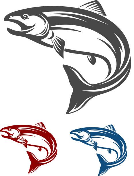 illustrazioni stock, clip art, cartoni animati e icone di tendenza di pesce salmone - trout