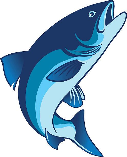 salmon fish - redfish stock illustrations, clip art, cartoons, & icons