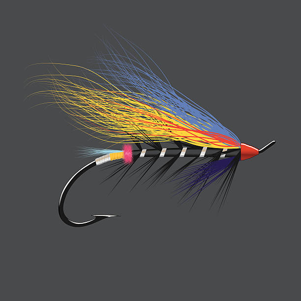 Salmon Fly - Black Doctor vector art illustration