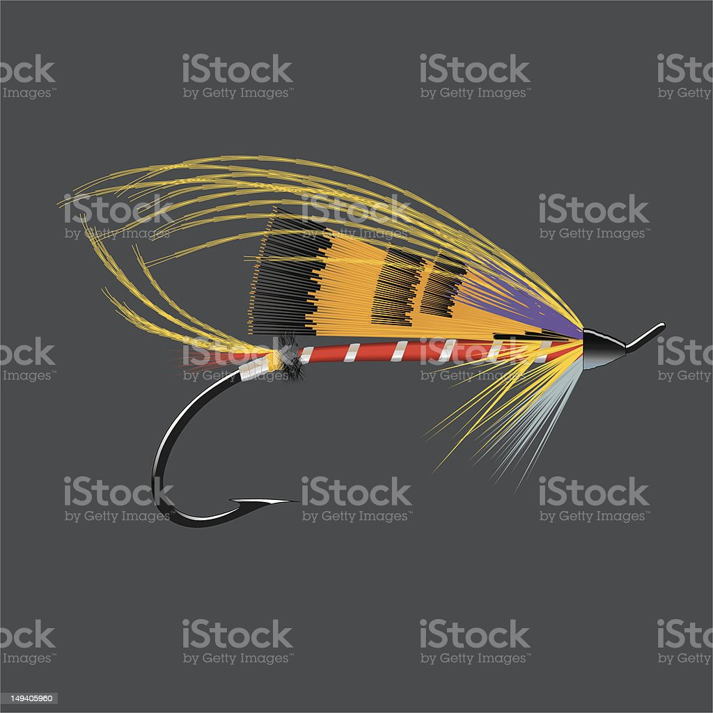 Salmon Fly - Durham Ranger vector art illustration