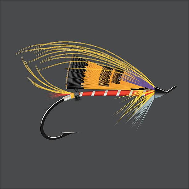 Salmon Fly - Durham Ranger vector art illustration