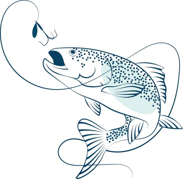 Salmon jumping for bait vector art illustration